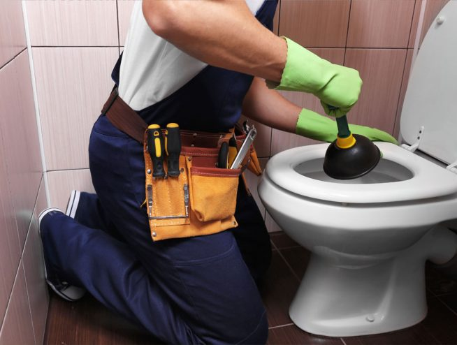 Fix a Blocked Toilet